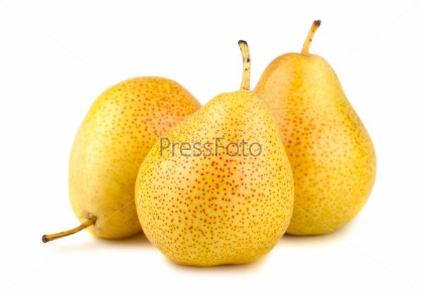 Фотография на тему Три спелые желтые груши