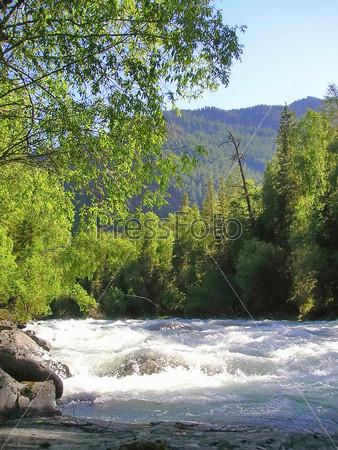 Алтайские горы в солнечный летний день