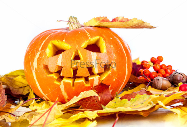 Фотография на тему Хэллоуин. Фонарь из тыквы