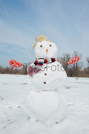 Фотография на тему Большой снеговик