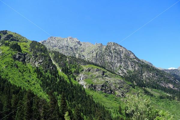 Зеленые горы Кавказа