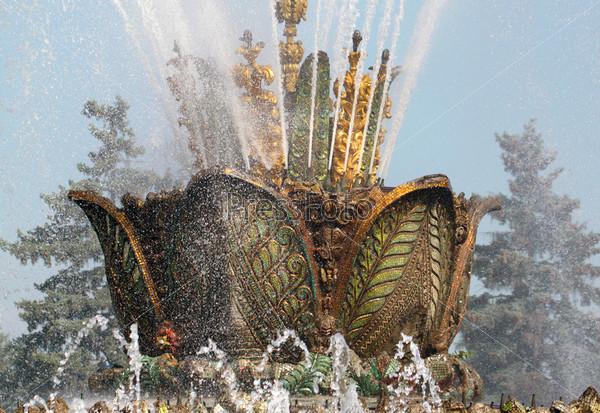 Фотография на тему Красивый фонтан каменный цветок