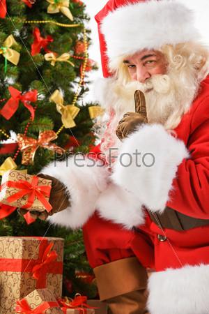 Санта-Клаус приносить подарки и кладет под елку