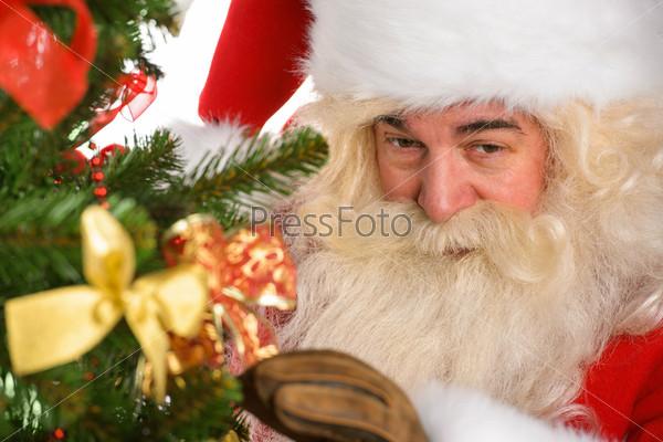 Фотография на тему Санта Клаус украшает Рождественскую елку