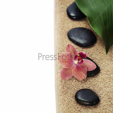 Спа композиция с красивыми орхидеями