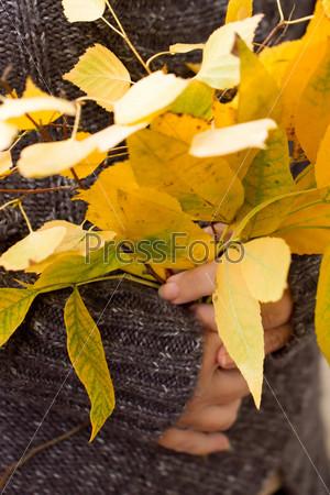 Женщина держит букет желтых листьев