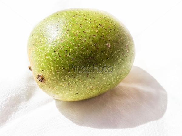 Фотография на тему Зеленый орех