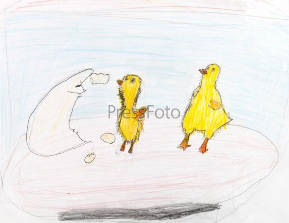 Фотография на тему Желтые цыплята, вылупившиеся из яиц