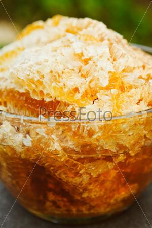 Свежий мед в сотах в стеклянной тарелке