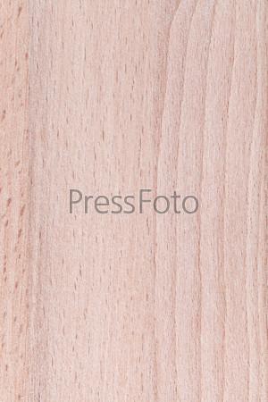 Фотография на тему Деревянная буковая панель