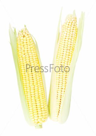 Фотография на тему Кукуруза