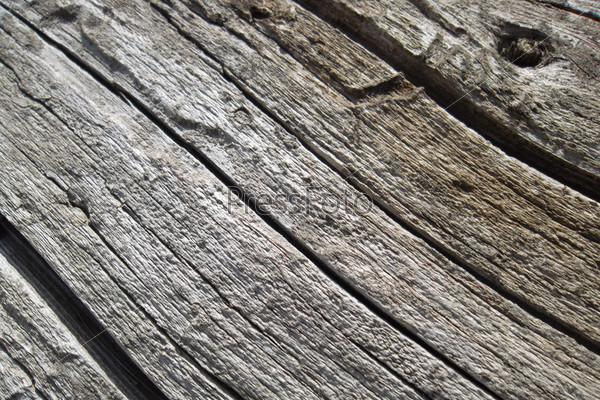 Фотография на тему Сухая древесина