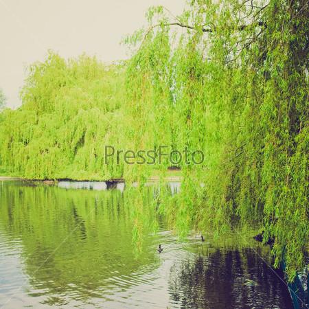 Риджентс парк в Лондоне, Англия, Великобритания