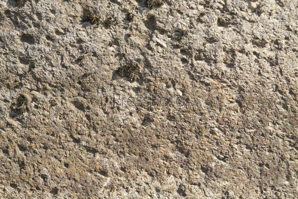 Фотография на тему Каменная текстура