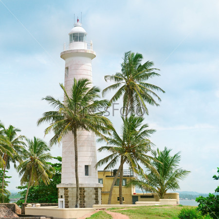Lighthouse and palm trees in the town of Galle, Sri Lanka