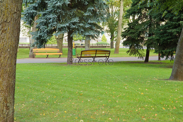 Benches in park. Grodno, Belarus