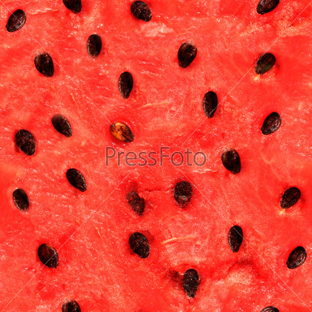 Seamless texture of watermelon