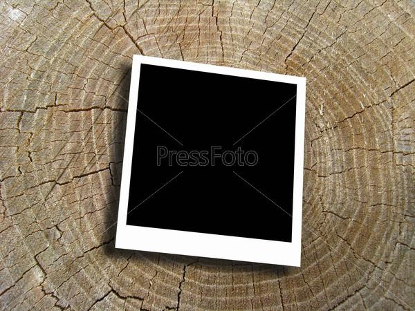 Empty photo on the pattern of tree