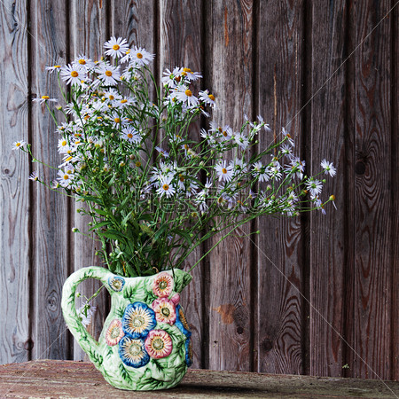 Still life with blue asters in vase.