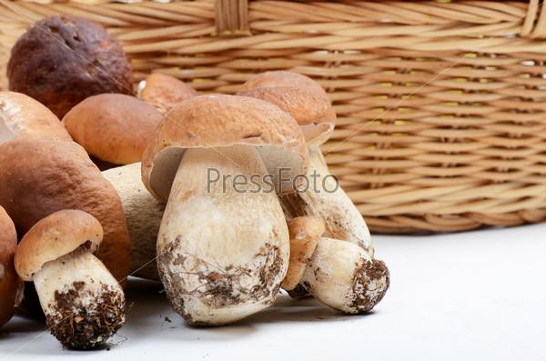 Сырые белые грибы