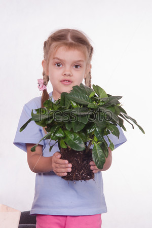 Child transplants houseplant