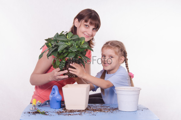 Mother and daughter transplanted flower room