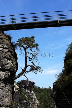 View over German National Park Sachsische Schweiz