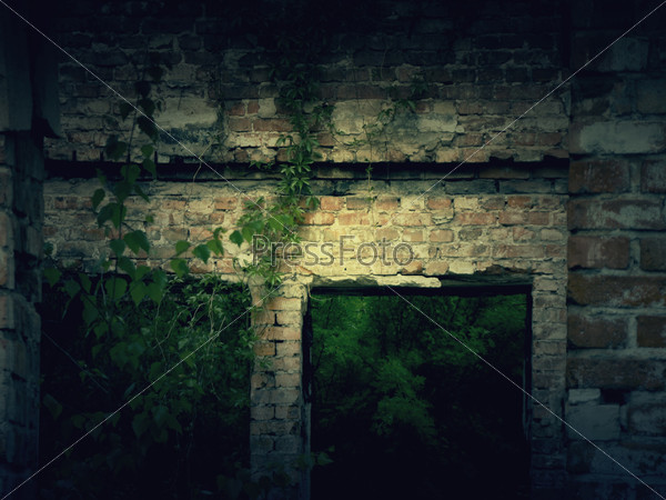 Vintage Abandoned House