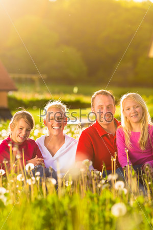 Happy family sitting in summer meadow