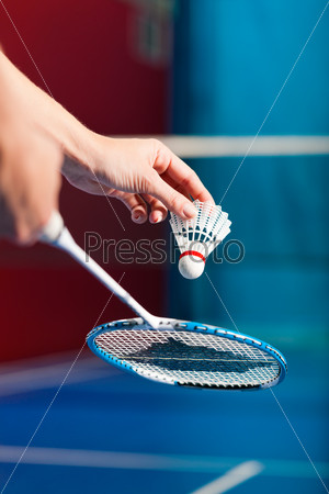 Badminton sport in gym - hand with shuttlecock