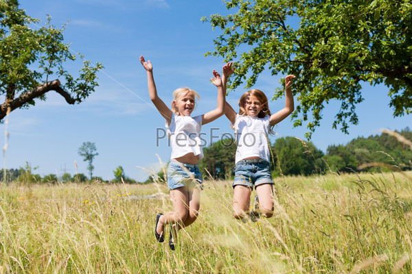 Happy children in a meadow jumping