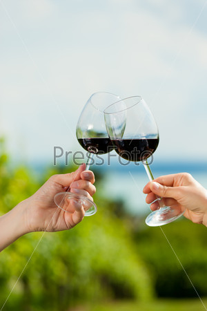 Couple drinking wine at lake in summer