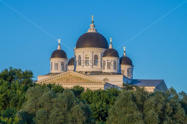 Город Арзамас. Купола Воскресенского собора