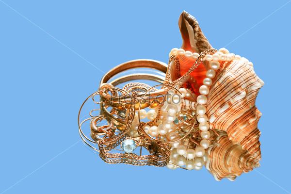 Shell And Treasure
