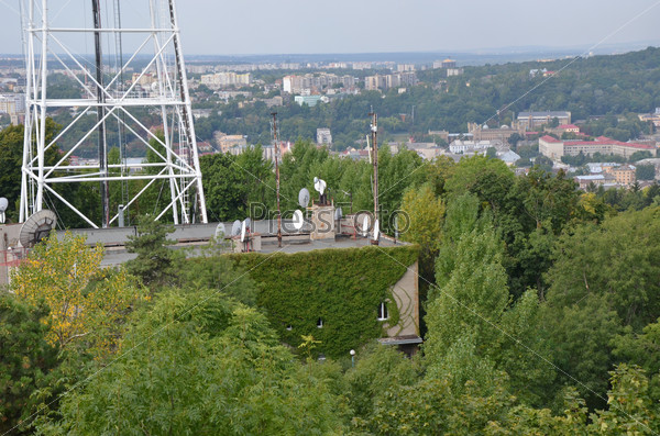 Roofs of city Lviv and television tower with trees