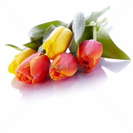 Bouquet from yellow and red tulips.