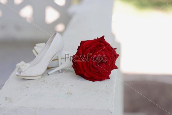 Красная роза и белые туфли