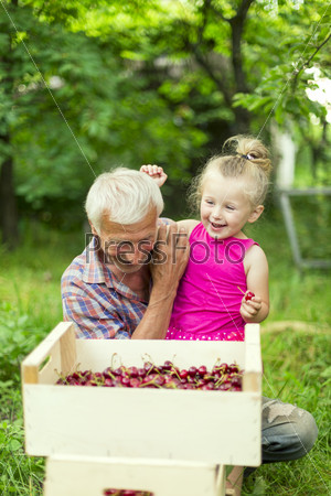 Grandfather with the granddaughter eating cherries