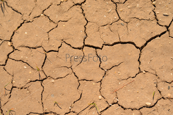 Cracked brown ground surface