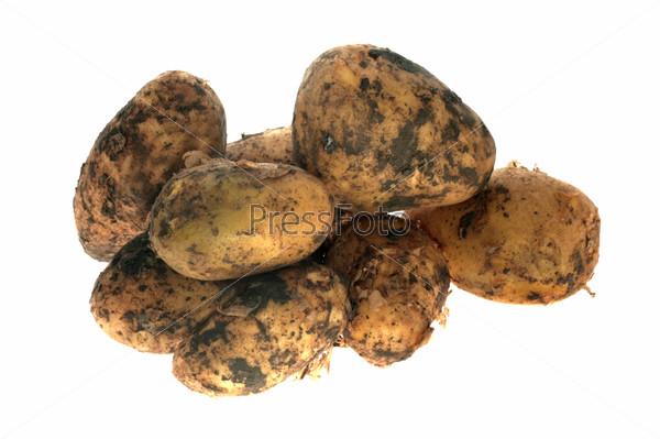 Молодой картофель на белом фоне