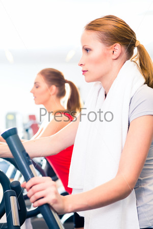 Women at cardio training in gym