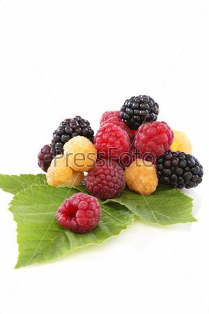 Raspberries and blackberries with green leaves.
