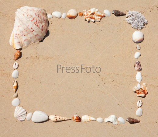 Seashells  picture frame