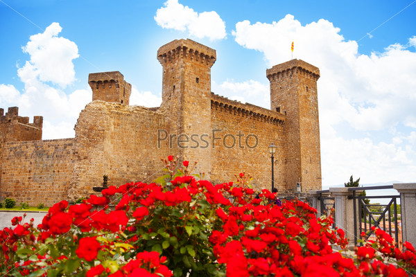 Bolsena castle in spring flowers