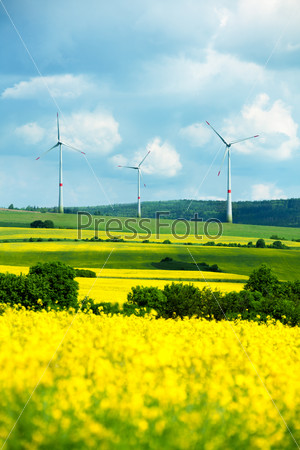 Field with wind turbines