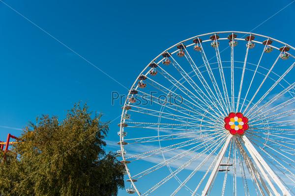 Ferris wheel in entertainment center