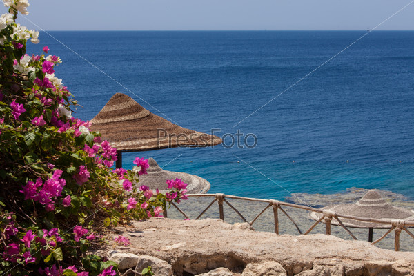 Sea, bougainvillea and beach umbrella