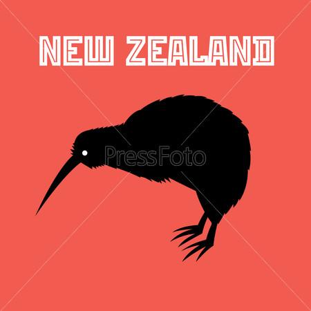 kiwi bird symbol of New Zealand