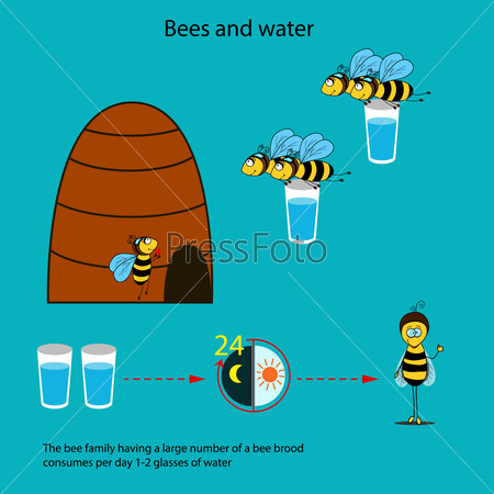 Bees and water