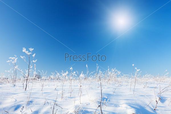 Снежное поле и голубое небо